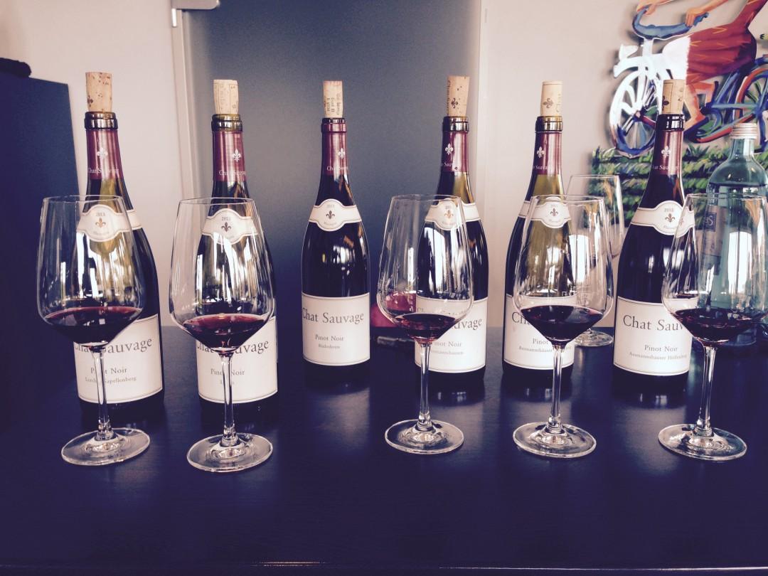 Chat Sauvages 2013 Probe im Weingut